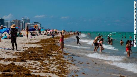 A medida que Florida emerge del cierre, los casos de Covid-19 aumentan
