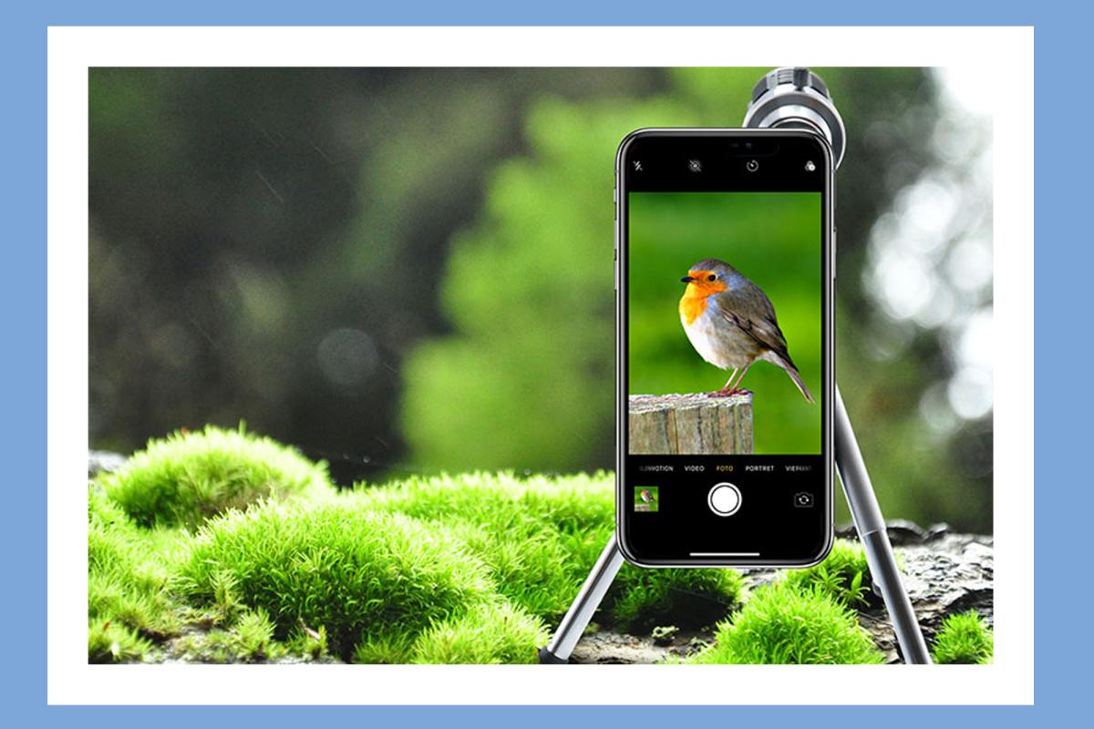 10 ofertas para ayudarte a tomar mejores fotos y videos en tu iPhone