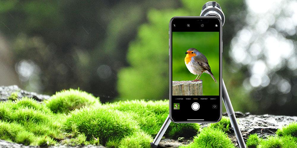 Un teléfono con trípode y lente, con la imagen de un pájaro.