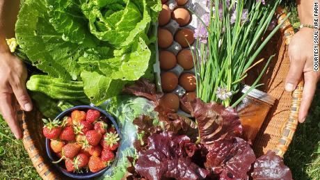 Frutas, verduras, hierbas y huevos de Soul Fire Farm.