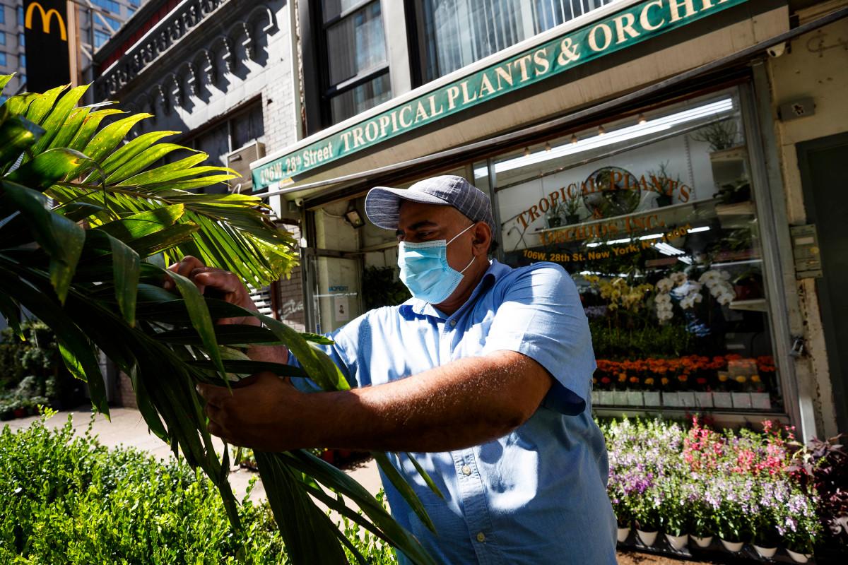 Plantas tropicales y orquídeas impulsadas por comidas al aire libre después del cierre de COVID-19