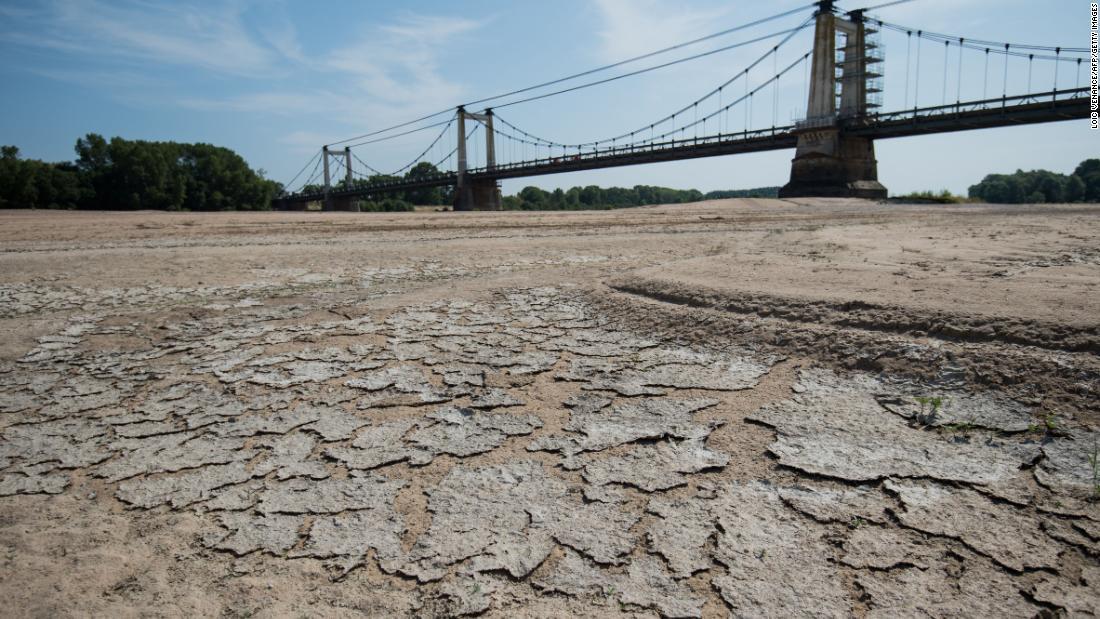 La última década fue la más calurosa registrada en la Tierra, exponiendo la sombría realidad del cambio climático