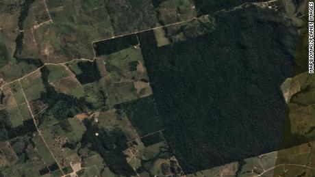 Foto satelital de Itaituba antes de la deforestación el 20 de junio de 2020