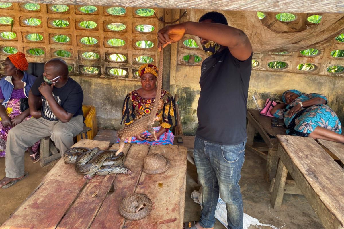 Los mercados húmedos de Nigeria prosperan a pesar de la pandemia de coronavirus